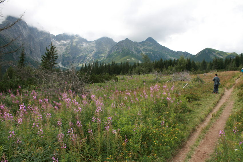 The High Tatras have two dozen mountains between 7,000-8,700 feet.