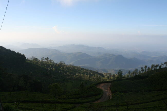 The town of Haputale is in the middle of tea plantations, including the Lipton empire.