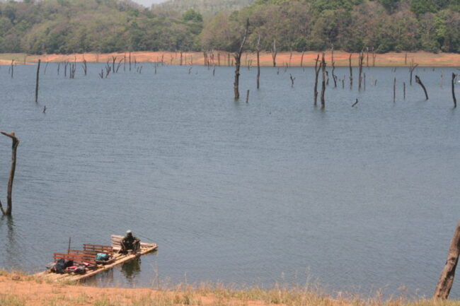 The Periyar Wildlife Sanctuary is a 777-square-kilometer park with a 26-square-kilometer artificial lake built by the British in 1895.