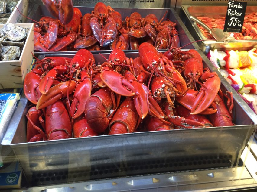 Lobsters at the Saluhall